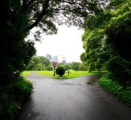 Unterwegs im Yoyogi Park