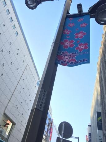 Sakura Beflaggung